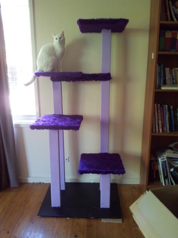 Cat Climbing Tower Diy Data